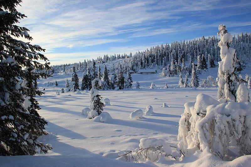 Schneelandschft mit Licht und Schatten.