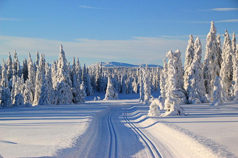 Auf dem Weg nach Gammel Sætra mit herrlichem Blick ins Jotunheimen.