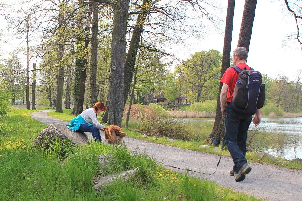 Etwas schatten ist gut! Hier im Park von Petzow können wir im Schatten lustwandeln.