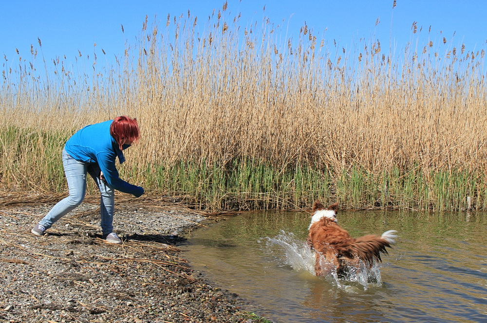 Schwimmt Manne oder nicht? Er ist noch sehr zögerlich!