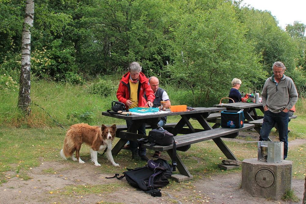 Wir beginnen mit einem Picknick - hier geht es bergauf und bergab, da brauchen wir Energie!