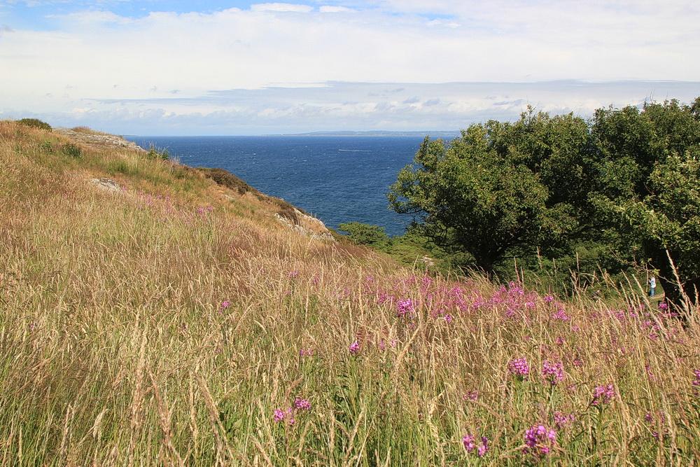Vom Plateau aus können wir bis Torekov und zur Väderön sehen.