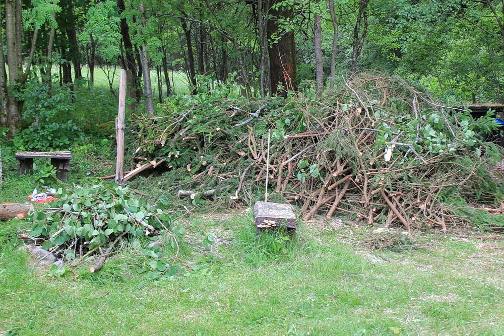 Lagerfeuerholz haben wir jetzt in größeren Mengen!