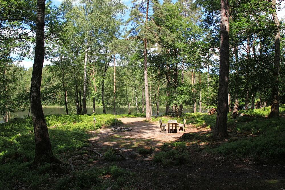 Auf der Halbinsel sind 2 Feuerstellen und Rastplätze - eben echt schwedisch. Fazit - beim nächsten mal müssen wir den Picknickkorb mitnehmen!