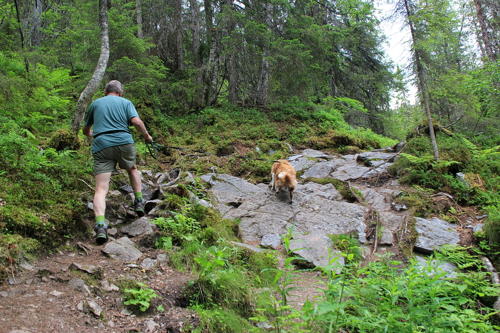 Der Weg ist steinig und erfordert unsere ganze Aufmerksamkeit. Manne könnte eine Bergziege sein, so schnell ist er über alle Steine und Felsen.
