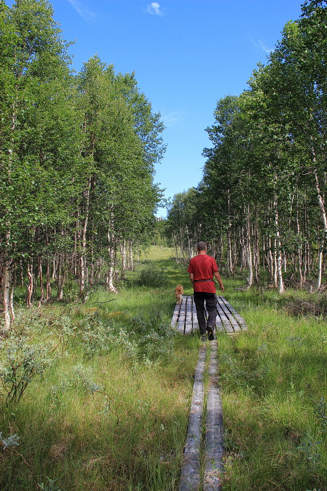 Der Wanderweg beginnt gut - Stege über Schmodder und Bach!