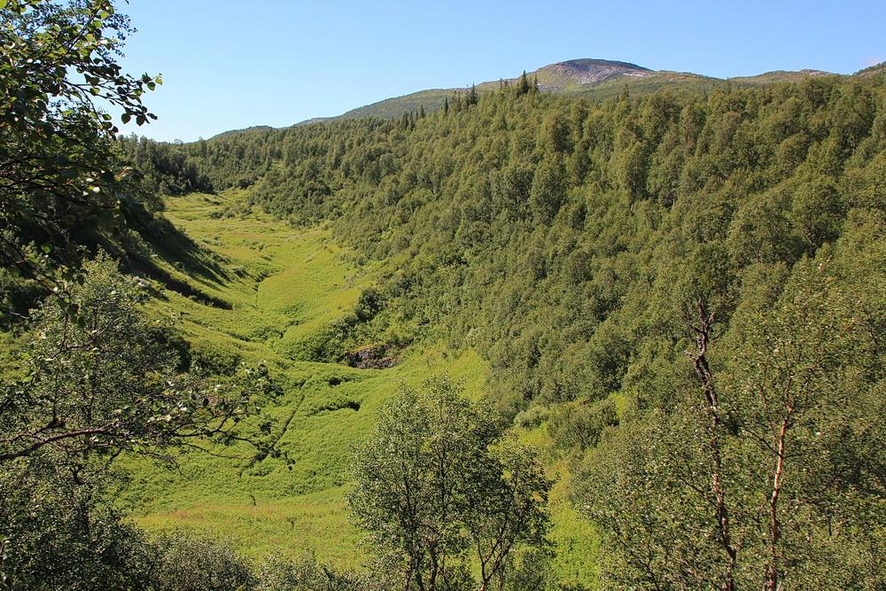 Das Kolosseum - ein dicht bewachsenes Tal.