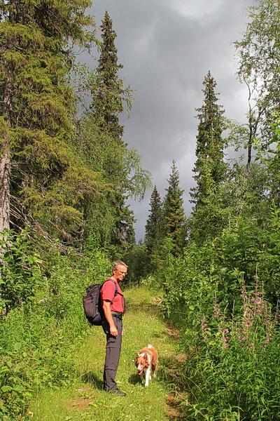 Wir wandern anfangs durch richtigen Fichtenwald und der Weg ist breit und bequem zu gehen, auch bergauf.