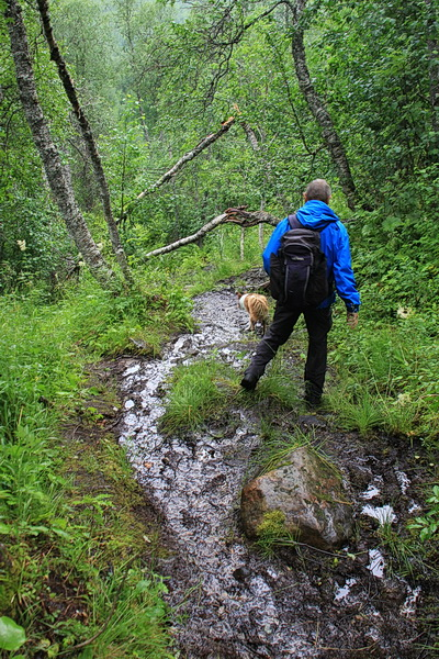 Um ins Tal der Tespa zu kommen, müssen wir steil bergab gehen. Der Weg ist abenteuerlich, der Blick ins Tal zeigt, daneben treten dürfen wir nicht.