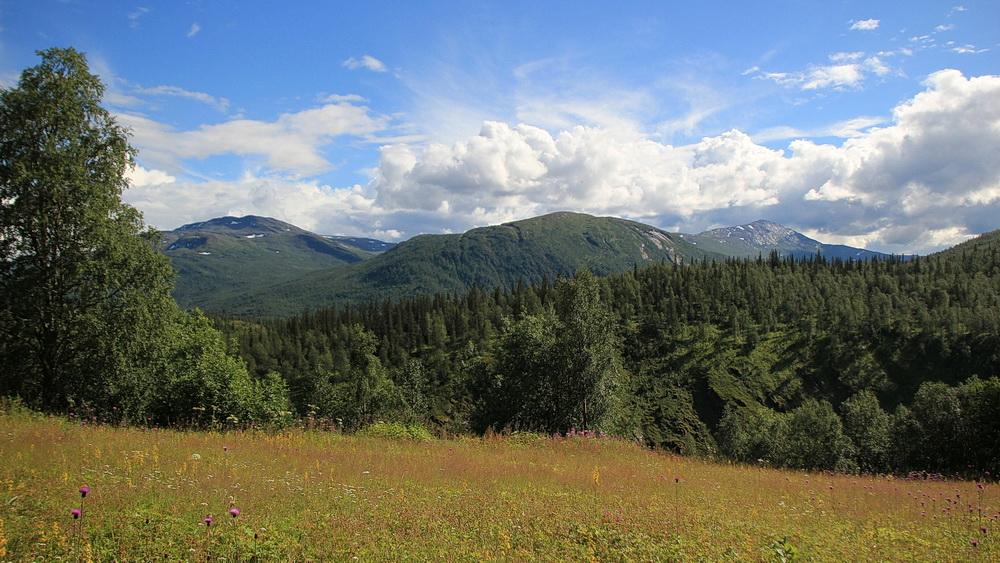 Vom Bauernhof hat man einen tollen Blick in die Berge - hier das Saltfjellet.