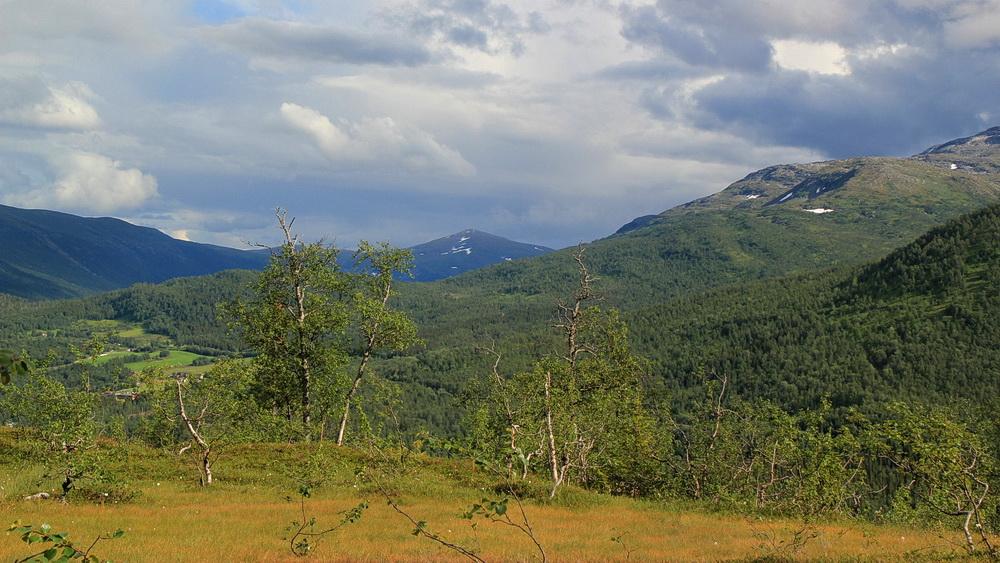 Im Hintergrund die Berge des Saltfjället