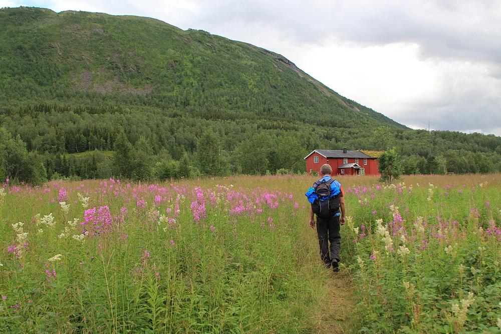Wir haben es fast geschafft, noch 1km, dann sind wir am Auto, 10 km liegen hinter uns, davon 5 bergauf und der Rest immer bergab.