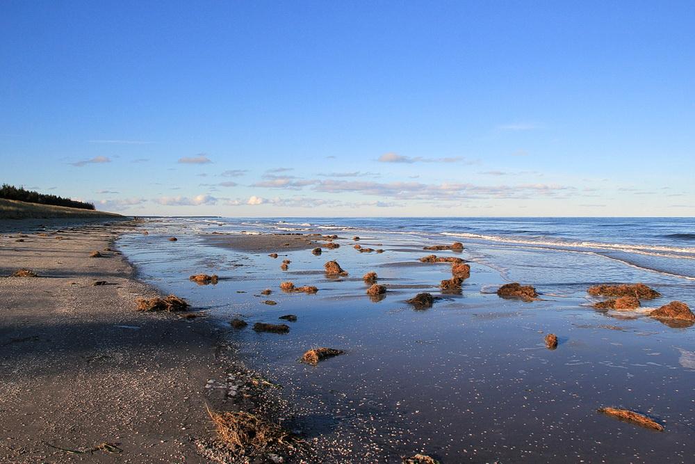 7. Januar - alles vorbei! Strandbreite wieder 20 m! Ein paar Seetangreste liegen noch rum, sonst merkt man nichts mehr.