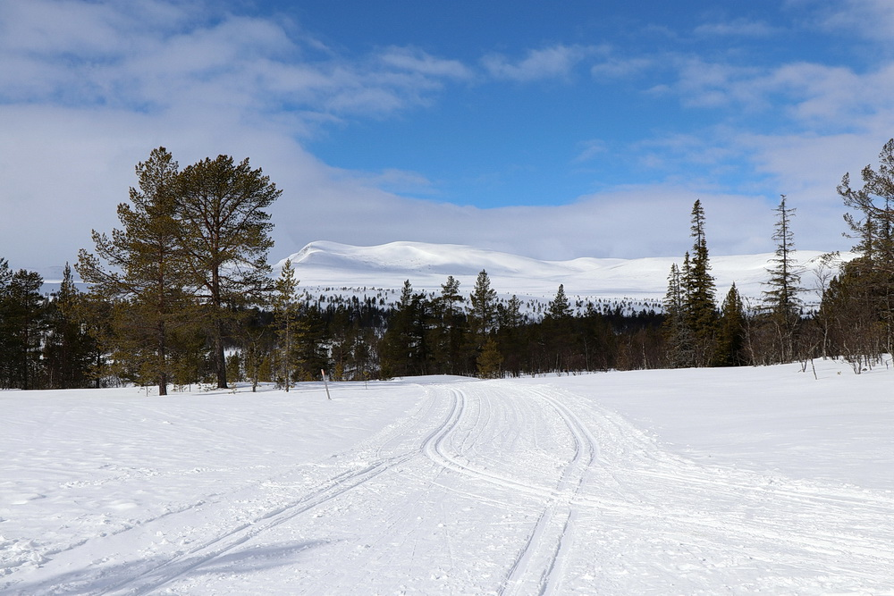 Am Abzweig hinter unserer Hütte schauen wir ins Gebirge - dahin müssen wir noch mal! Wird wohl erst im nächsten Jahr sein!