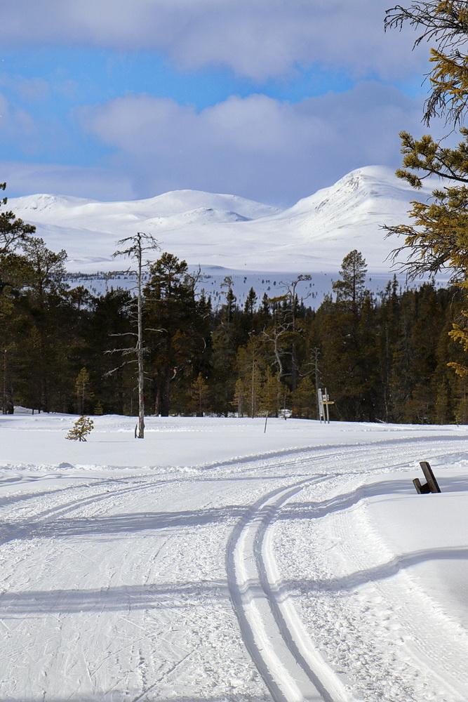 Blick in die Berge Norwegens.