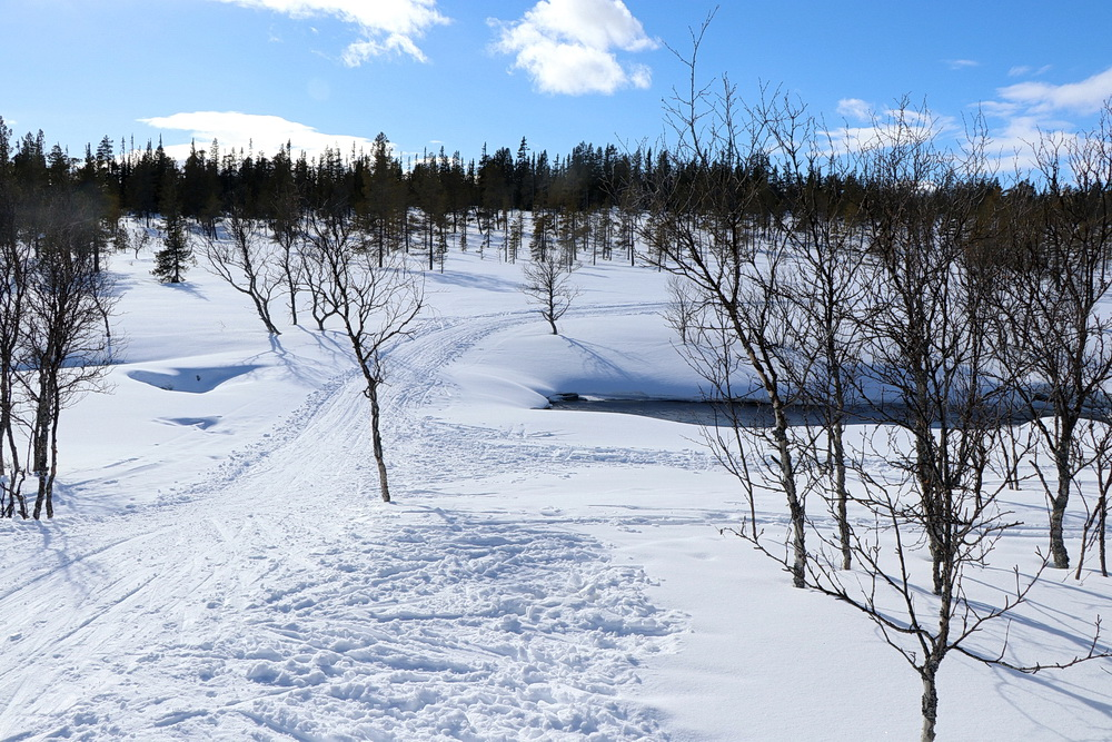 Wir sind fast wieder zu Hause. Schnell noch ein Blick zur Schneebrücke - sie wird immer schmaler, das offene Wasser auf beiden Seiten immer mehr.