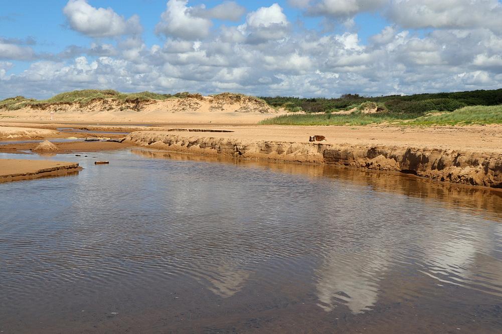 Das Flüsschen mäandert diesmal zum Kattegatt. Im Hintergrund die höchste Düne des Naturreservats.