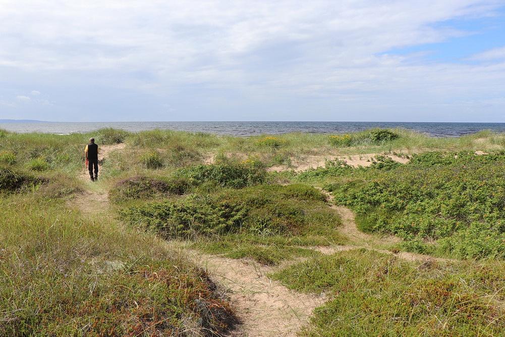 Die Dünen sind auch ein idealer Windschutz zum Sonnen.